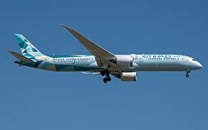 Фото Боинг Самолеты Пассажирские Самолеты Сбоку Dreamliner, 787-10, Etihad Airways