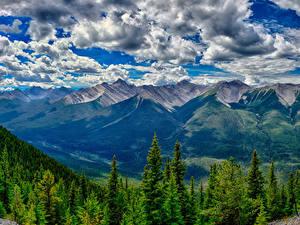 Картинки Канада Парки Горы Леса Пейзаж Банф Облака HDR Природа