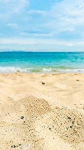 Картинки Море Пляжа Песок Природа