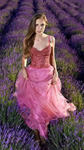 Фотография Лаванда Поля Платье Взгляд Elle Tan молодые женщины