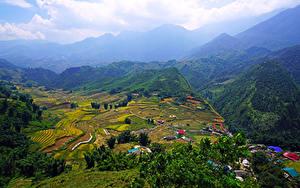 Фотография Вьетнам Пейзаж Горы Поля Дома Muong Hoa Valley Природа