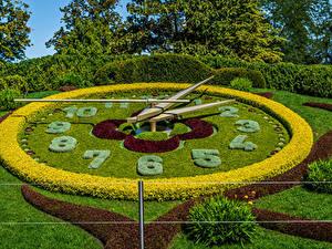 Обои Швейцария Парк Часы Дизайна Кустов Газоне Geneva Природа