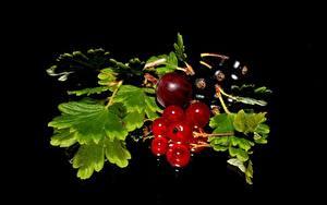 Картинки Ягоды Крыжовник Смородина На черном фоне Листья Продукты питания