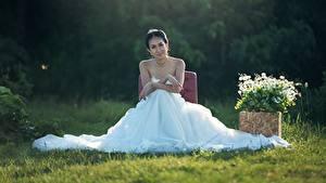 Фотографии Невеста Брюнетка Сидящие Платье Трава Свадьба