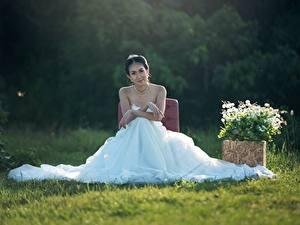 Фотографии Невесты Брюнетка Сидящие Платье Траве Свадьба