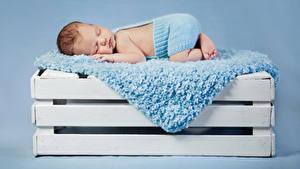 Фотография Цветной фон Младенцы Спит
