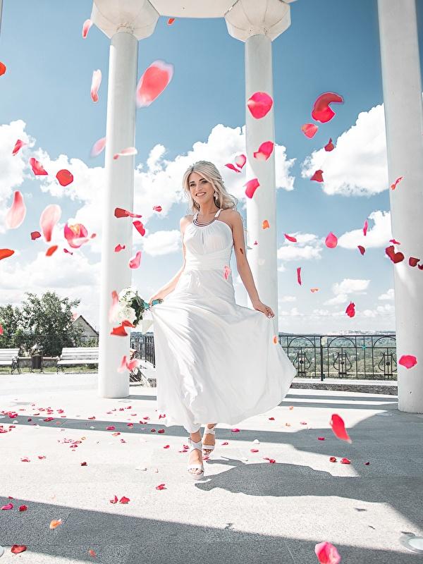 Фото колонны Maxim Tumanov Девушки Лепестки платья 600x800 Колонна девушка лепестков молодые женщины молодая женщина Платье
