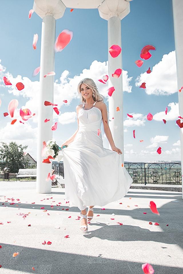 Фото колонны Maxim Tumanov Девушки Лепестки платья 640x960 Колонна девушка лепестков молодые женщины молодая женщина Платье
