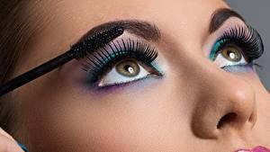 Фотографии Ресница Глаза Мейкап Красивые Смотрит Нос Девушки