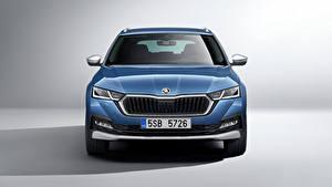 Обои для рабочего стола Шкода Синяя Металлик Спереди Octavia Scout, 2020 Автомобили