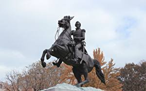 Фотографии Вашингтон город Памятники Лошади Штаты district of Columbia, Lafayette Square Города