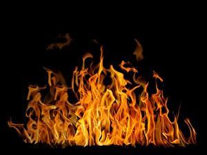 Картинка Пламя Черный фон Accelerated oxidation