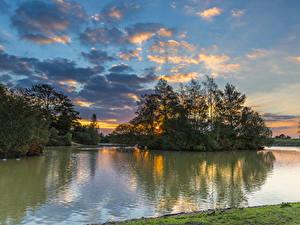 Фото Англия Реки Рассветы и закаты Небо Дерево Облака Fritham