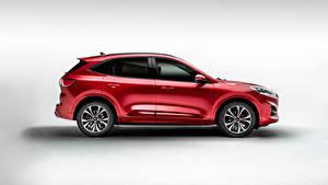 Обои Ford Кроссовер Красные Металлик Сбоку Kuga ST-Line X EcoBlue Hybrid 2020 автомобиль