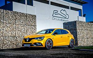 Картинка Renault Желтый 2018 Megane R.S. Trophy Worldwide Машины