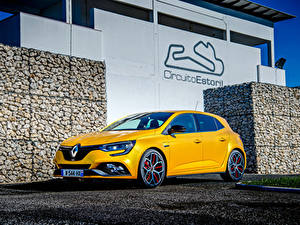 Картинка Renault Желтый 2018 Megane R.S. Trophy Worldwide Машины