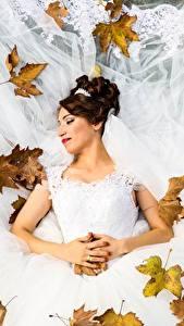 Обои Осень Листья Невеста Свадьба Платье Шатенка