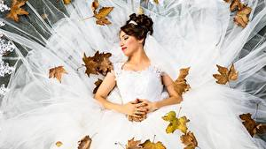 Обои Осень Листья Невесты Свадьба Платья Шатенки