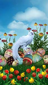Обои Пасха Праздники Птицы Тюльпаны Яйцо Дизайна Цветы