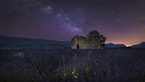 Фотография Франция Поля Лаванда Небо Звезды Руины Ночные Valensole Природа