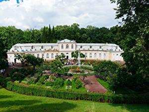 Обои для рабочего стола Россия Санкт-Петербург Парк Фонтаны Дворца Дизайна Кусты Газон Peterhof Природа Города
