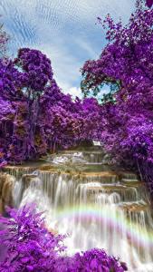 Обои Таиланд Парк Водопады Цветущие деревья Huay Mae Khamin Waterfall