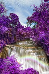 Обои Таиланд Парки Водопады Цветущие деревья Huay Mae Khamin Waterfall