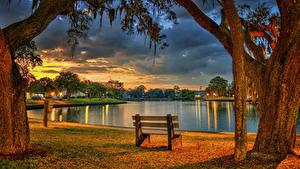 Фото Штаты Парк Вечер Пруд Флорида Ствол дерева Скамейка HDR Tarpon Springs Природа