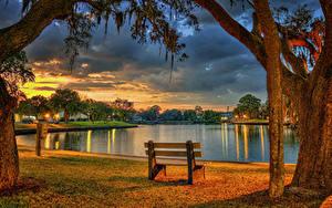 Фото США Парки Вечер Пруд Флорида Ствол дерева Скамья HDRI Tarpon Springs Природа