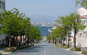 Обои Япония Здания Дороги Улица Деревья Hakodate город