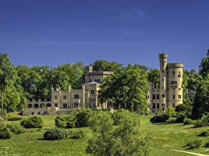 Обои Германия Потсдам Дворца Кустов Дерево Babelsberg Palace
