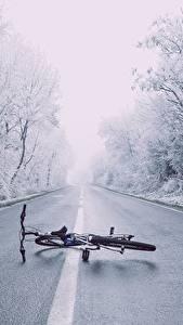 Фотография Зима Дороги Асфальт Деревья Велосипед Природа