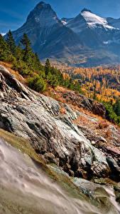 Картинки Америка Осень Парки Гора Лес Пейзаж Glacier National Park Природа