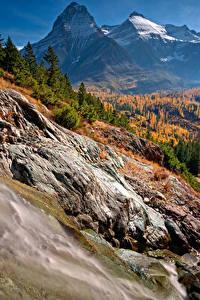 Картинки Штаты Осень Парки Горы Леса Пейзаж Glacier National Park