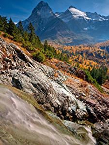 Картинки Штаты Осень Парки Горы Леса Пейзаж Glacier National Park Природа