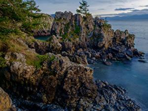 Фотография Канада Парк Берег Скалы East Sooke Park Природа