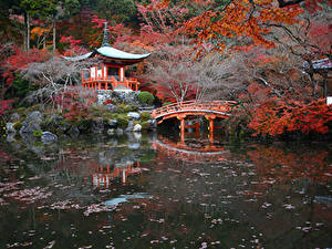 Обои Япония Киото Осенние Парки Пруд Мосты Пагоды Природа