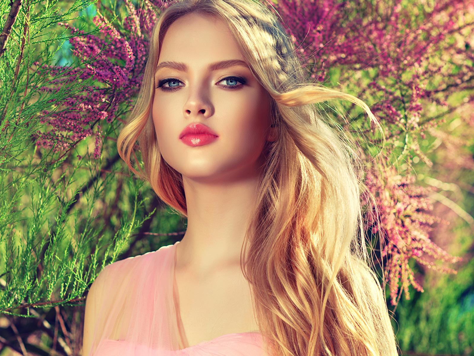 Обои для рабочего стола блондинки косметика на лице Красивые лица Девушки смотрят 1600x1200 блондинок Блондинка Макияж мейкап красивый красивая Лицо девушка молодые женщины молодая женщина Взгляд смотрит