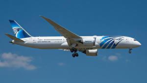 Фотографии Боинг Самолеты Пассажирские Самолеты Сбоку 787-9, Egypt Air, Dreamliner