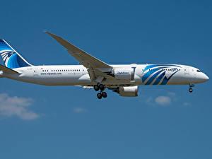Фотографии Боинг Самолеты Пассажирские Самолеты Сбоку 787-9, Egypt Air, Dreamliner Авиация