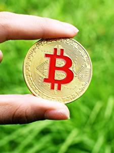 Картинка Пальцы Крупным планом Биткоин Монеты Деньги Золотой