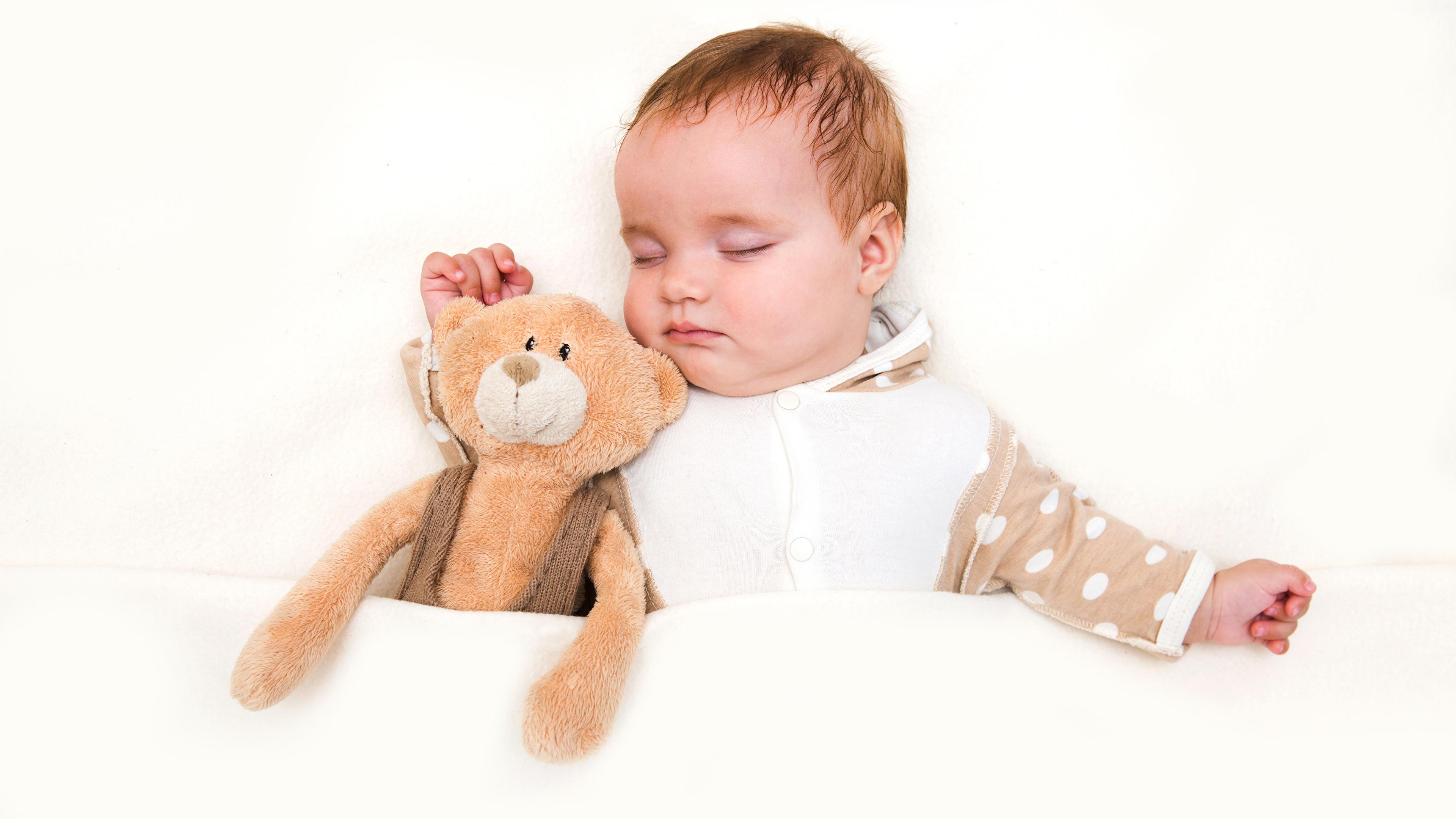 Обои для рабочего стола младенца ребёнок Спит Мишки белом фоне 3840x2160 Младенцы младенец грудной ребёнок Дети сон спят спящий Плюшевый мишка Белый фон белым фоном