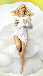Фотографии Блондинка Платье Ноги