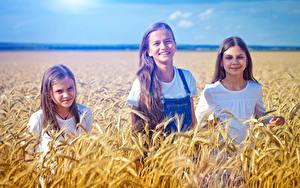Фото Поля Колосок Трое 3 Девочки Улыбка ребёнок