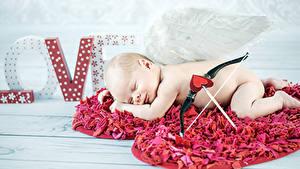 Фотография День святого Валентина Младенцы Спят Сердечко Купидона