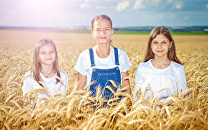 Картинки Поля Колос Девочка Втроем ребёнок