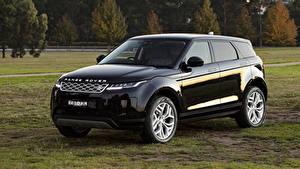 Картинки Range Rover CUV Черная Металлик 2019-20 Evoque D180 S авто
