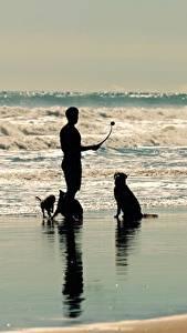 Обои Море Волны Мужчины Собака Силуэт животное
