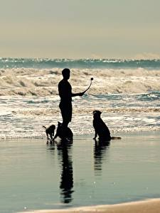 Обои для рабочего стола Море Волны Мужчины Собака Силуэт животное