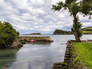 Фотография Испания Берег Причалы Залива Деревья Мох Luanco Asturias